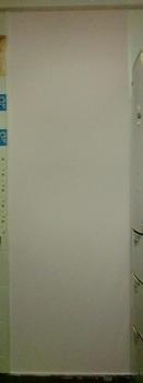 壁塗りー2.JPG